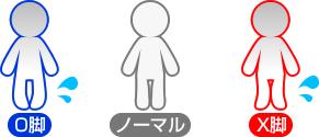 ノーマルとO脚、X脚の図